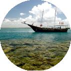 Mergulho nos Recifes dos Itacolomis